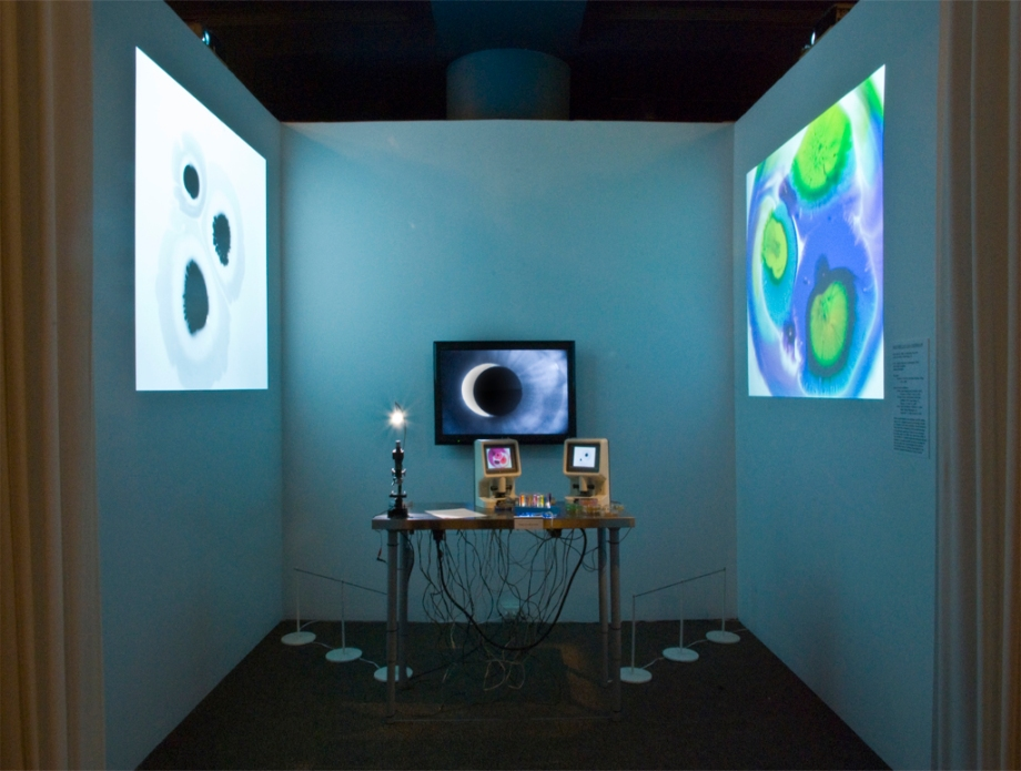 A.R.T. (Applied Research & Technology), 2010 display